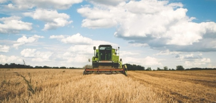 Running Your Own Farming Business