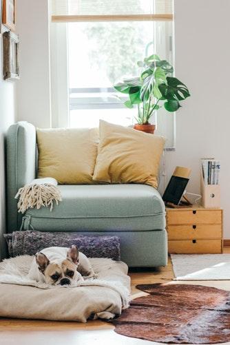 designer-decor-thrifty